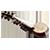 Sarod, Sitar, Violin, Mohan Veena classes in bangalore